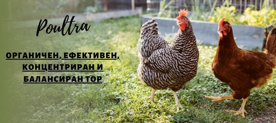 Органичен птичи  / пилешки / тор NPK POULTRA / ПОУЛТРА НПК 4-4-4+1.2МgO+46C Висококачественa органична птича тор 25кг.