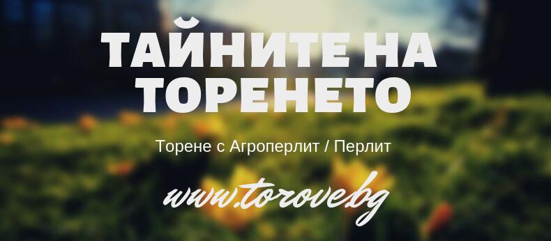 Торене с Агроперлит (перлит)