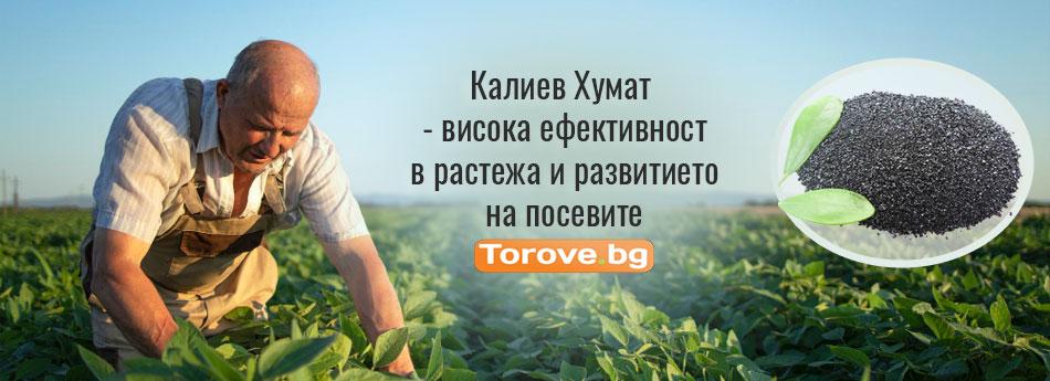 Калиев Хумат - висока ефективност в растежа и развитието на посевите