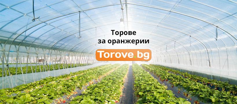 Торове за оранжерии - Какво НЕ знаете и е Важно при тях